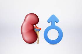 Artykuł Dieta normokaloryczna dla mężczyzn w kamicy fosforanowo-wapniowej